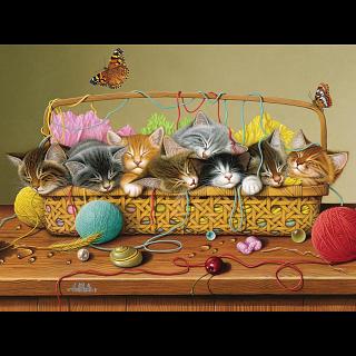 Basket Case - 350 Piece Family Puzzle