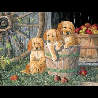 Puppy Pail - 350 Piece Family Pieces Puzzle