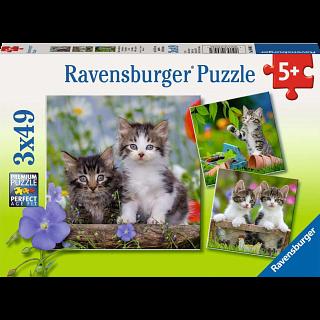 Tiger Kittens - 3 x 49 piece puzzles