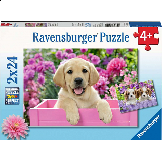 Me And My Pal - 2 x 24 piece puzzles