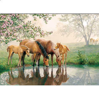 Horse Family - Family Pieces Puzzle