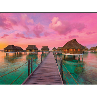 Colorful Paradise