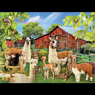 Six Llamas