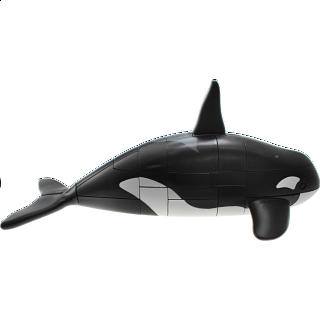 Puzzle Solution for Anipuzzle - Orca (Killer Whale)
