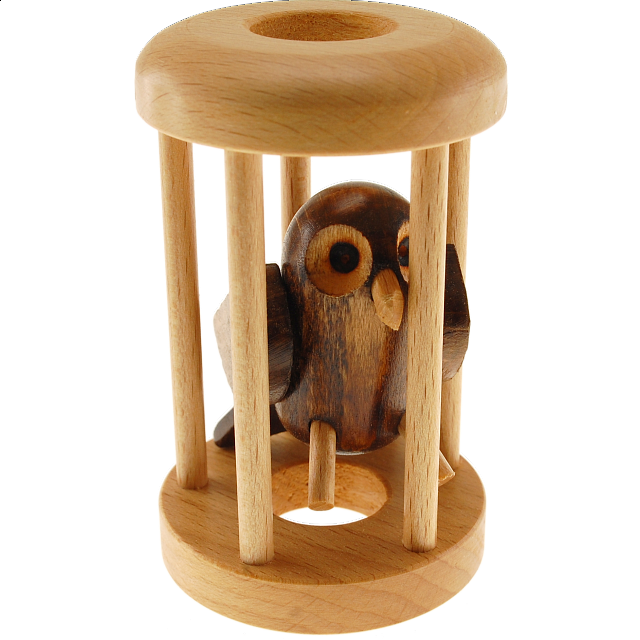 owl-in-a-cage