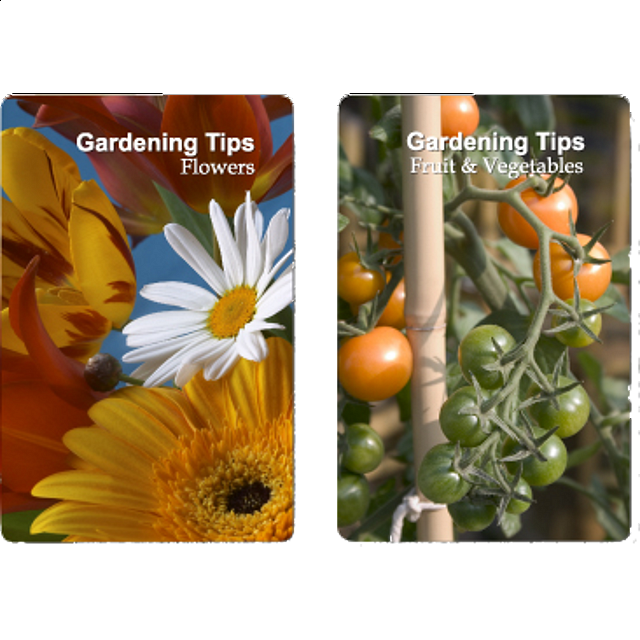 playing-cards-gardening-tips