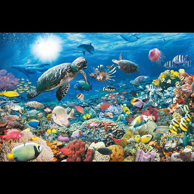 Image of Beneath the Sea