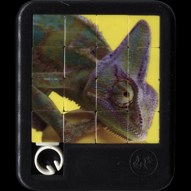 brilliant-creatures-chameleon