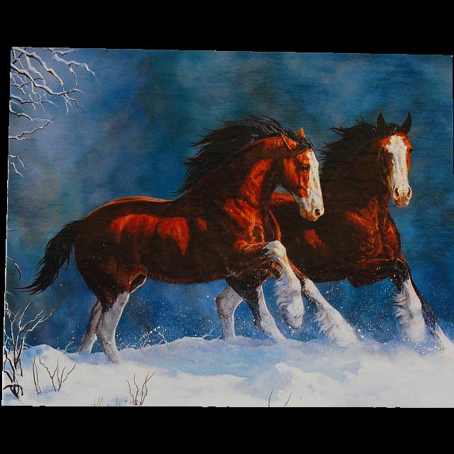 running-wild-snow-kings