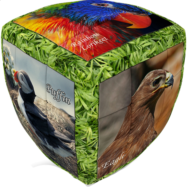 v-cube-2-pillow-2x2x2-unique-birds