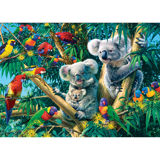 glow-in-the-dark-hidden-images-koala-camp