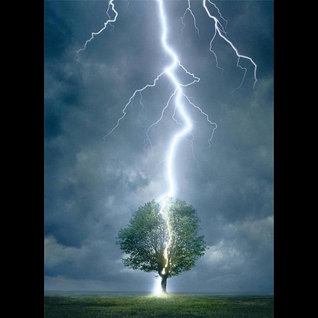 lightning-striking-tree
