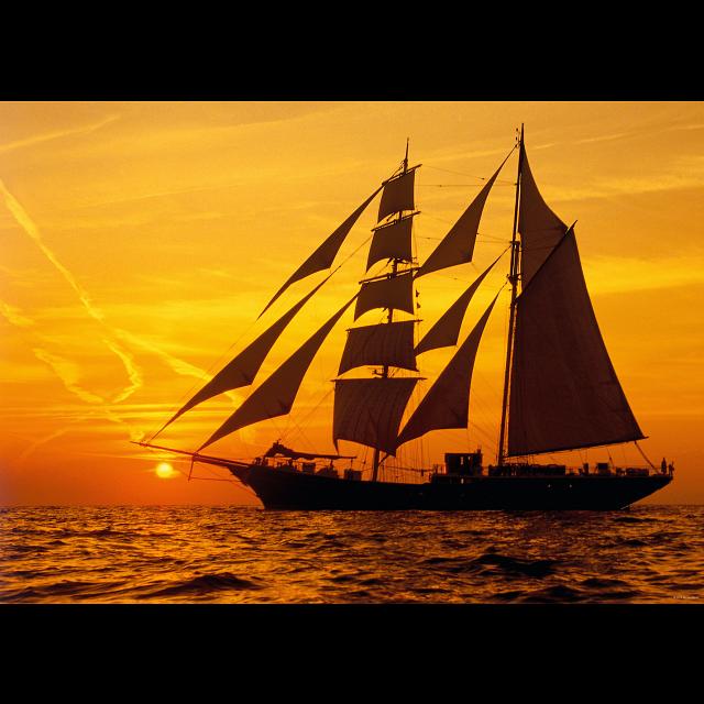 sunlight-sunny-sailing