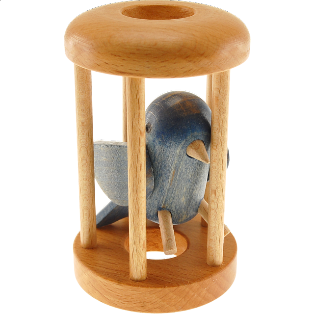 bluebird-in-a-cage