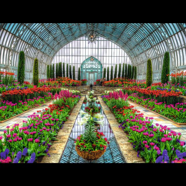 atrium-garden