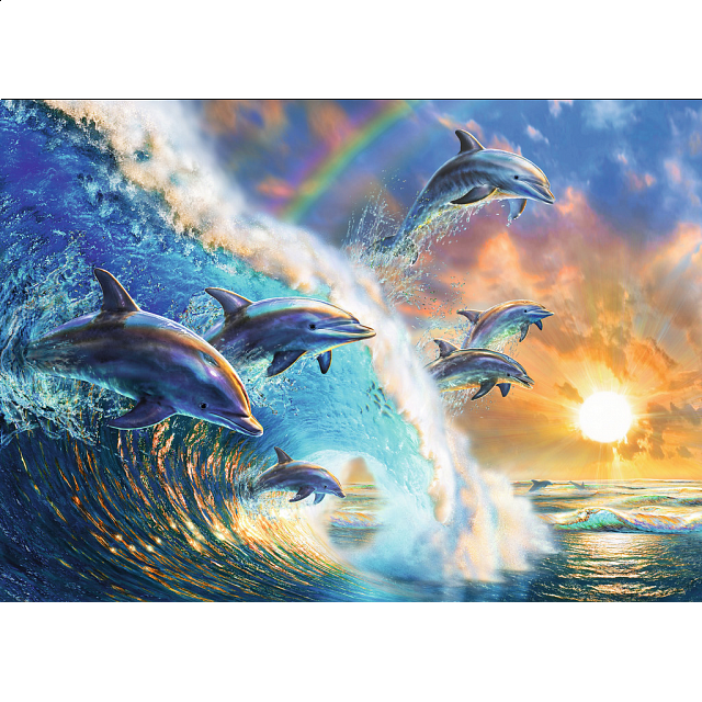 dancing-dolphins