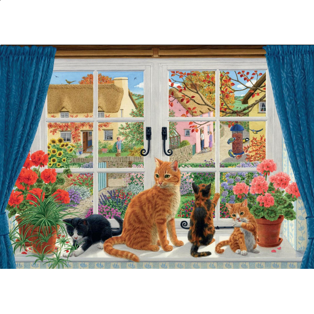 through-the-cottage-window