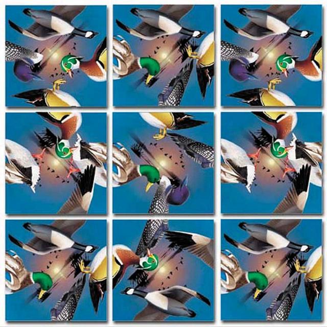 Scramble Squares - Water Birds