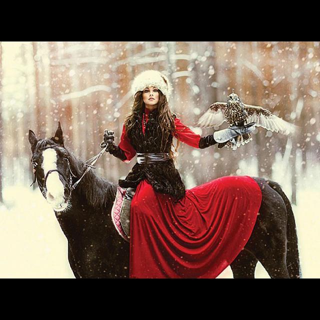 ceaco-fairy-tales-snowy-owl-puzzle
