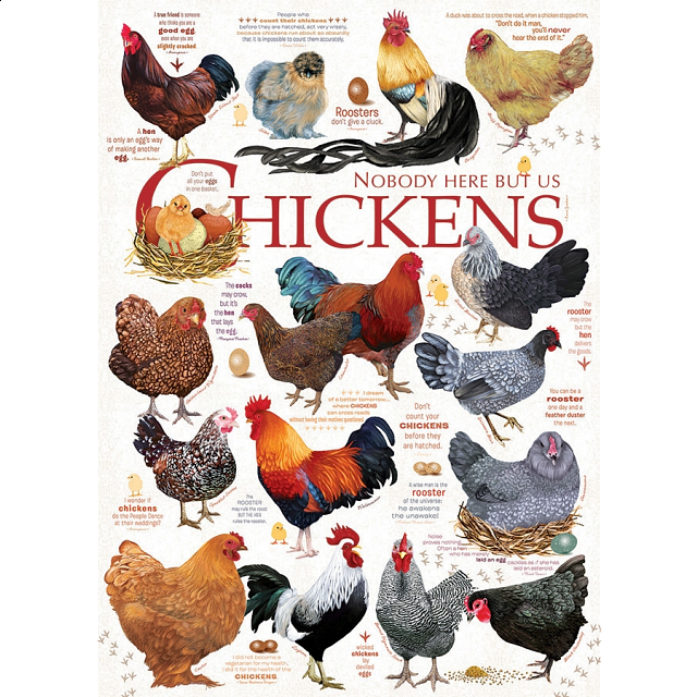 chicken-quotes