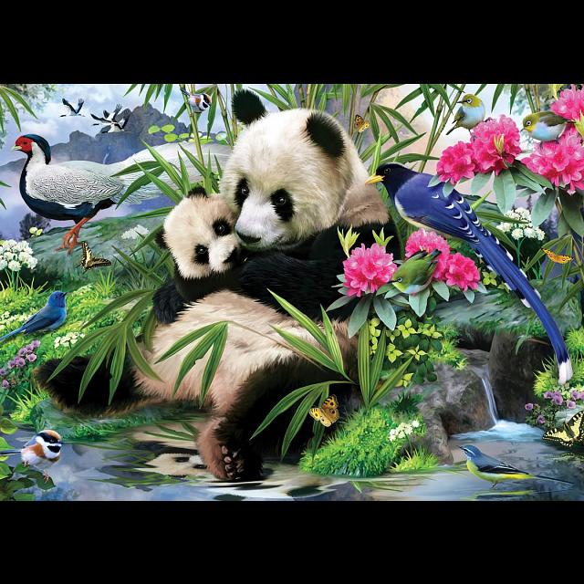 animal-planet-panda-sanctuary-puzzle-large-piece