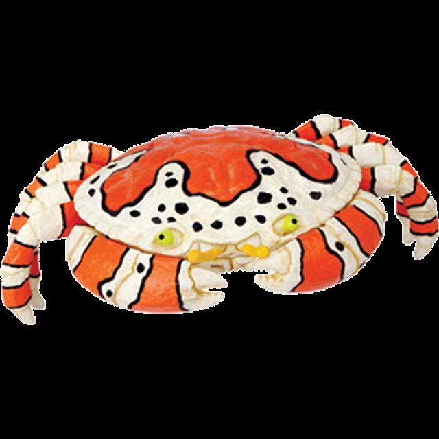 4d-puzzle-clown-crab