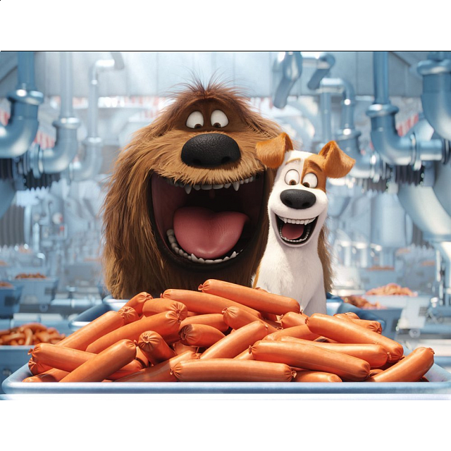 The Secret Life of Pets - 100 Piece