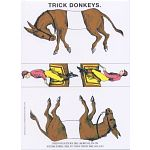Famous Trick Donkeys - Large Commemorative Edition