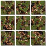 Scramble Squares - Moose! image