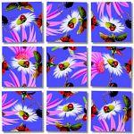 Scramble Squares - Ladybugs image