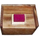 Melting Blocks Puzzle (Redstone Box) image