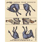 Famous Trick Donkeys - Color - Postcard - English - Blue
