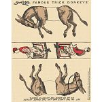 Famous Trick Donkeys - Color - Postcard - English
