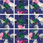 Scramble Squares - Wetland Birds