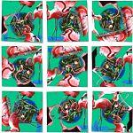 Scramble Squares - Flamingos