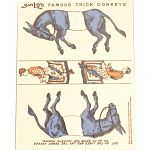 Famous Trick Donkeys - Color - English - Blue