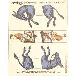 Famous Trick Donkeys - Color - English - Blue