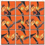 Scramble Squares - Bats