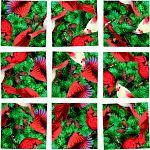 Scramble Squares - Cardinals image