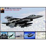F-16 Falcon image