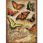 Backyard Butterflies - Large Pieces image