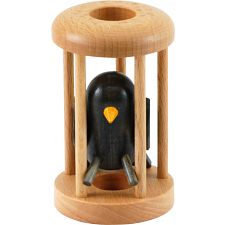 Blackbird in a Cage -