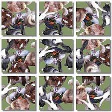 Scramble Squares - Bunnies -