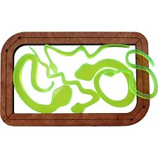 Five Snakes Puzzle -