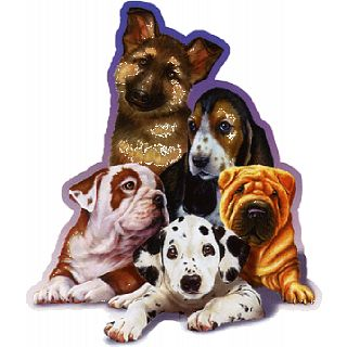 Picture of Puzzle Master Choose Me - Shaped Jigsaw Puzzle(PM01044) (Challenging Puzzles)